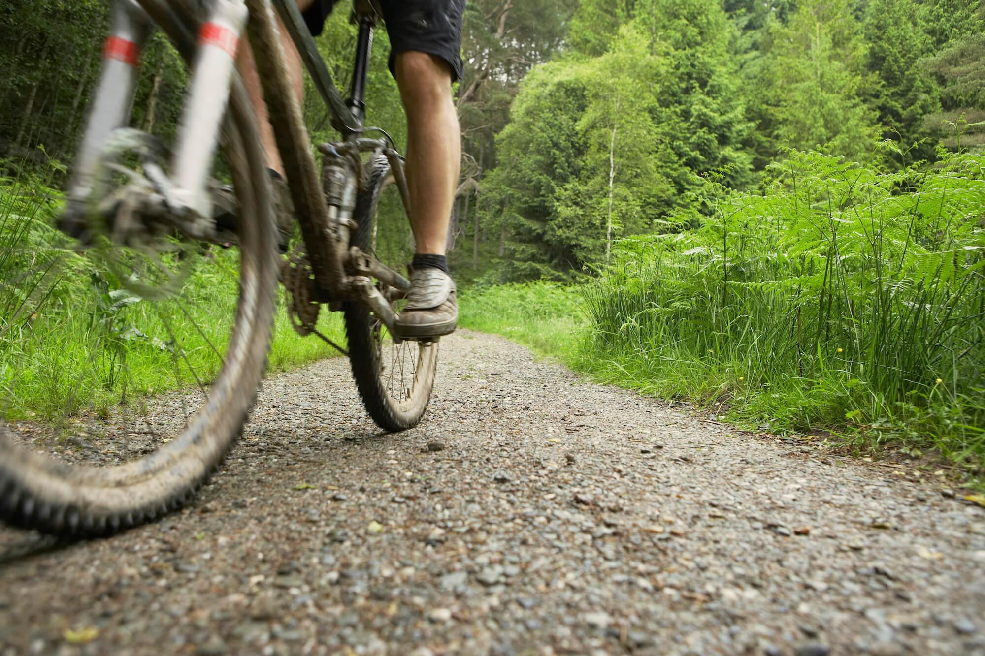 Mountainbiker on a Trail